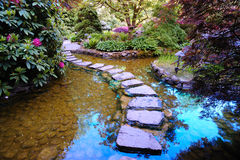 Japanese garden pond stock images