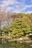 Japanese Garden Pond Landscape Royalty Free Stock Photos
