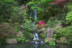 Japanese garden pond Stock Photography