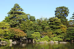Japanese garden. Pond in Japanese garden in summer Stock Images