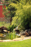 Japanese garden pond with waterfall and fishes. Water lilies, bulrush and lawn nearby Stock Photography