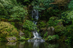 Japanese garden at Portland Royalty Free Stock Images