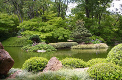 Japanese garden spring city Fort Worth royalty free stock photo