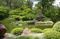 Japanese garden spring city Fort Worth. Pretty Japanese garden in Fort worth , Texas USA Royalty Free Stock Photo