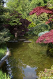 Japanese garden with reflection. View to japanese corner in the garden of villa Melzi in Bellagio, Italy Royalty Free Stock Image