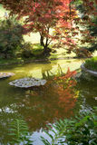 Japanese garden with reflection. View to japanese corner in the garden of villa Melzi in Bellagio, Italy Stock Photography