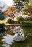 Japanese garden with reflection. View to japanese corner in the garden of villa Melzi in Bellagio, Italy Stock Image