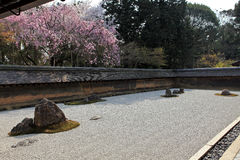 Japanese garden, Ryoan-ji Temple Stock Photography