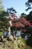 Japanese Garden San Francisco. Stone lantern in the Japanese Garden section of Golden Gate Park, San Franciscio royalty free stock photos