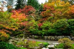 Japanese Garden in Seattle`s Washington Park Arboretum Stock Image