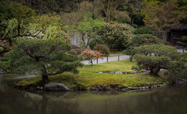 Japanese Garden. In Seattle Washington Stock Photography