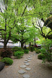 Japanese garden. Stock Photos