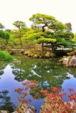 Japanese Garden in spring Royalty Free Stock Images