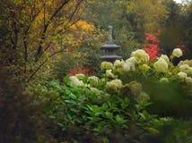 Japanese garden in the spring stock photo