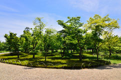 Japanese garden in spring, Kyoto Japan. Royalty Free Stock Images
