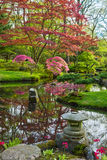 Japanese garden in spring Stock Image