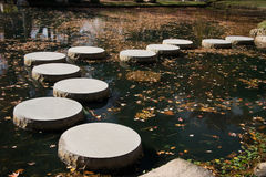 Japanese Garden Stepping Stones. Japanese garden pond with stepping stones Stock Images