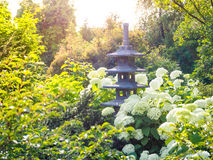 Japanese garden. Stone lantern placed among the flowers in Japanese garden. Stock Image