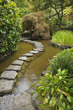Japanese garden. A stream and  path from stones Royalty Free Stock Photography