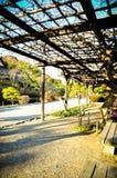 Japanese garden. Sun light in Japanese garden Stock Photos