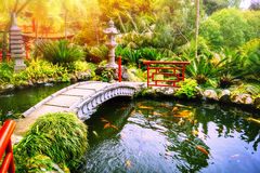 Japanese garden with swimming koi fishes in pond Stock Photo