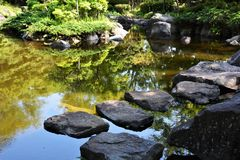 Japanese garden. When we take a walk around the Japanese garden, our mind settles down strangely. The chirping of the little birds is heard from the trees, and Stock Photos