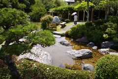 Japanese garden. When we take a walk around the Japanese garden, our mind settles down strangely. The chirping of the little birds is heard from the trees, and Royalty Free Stock Images
