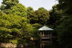 Japanese garden in Tokyo, Japan. General view of the Japanese garden in Tokyo, Japan Stock Images