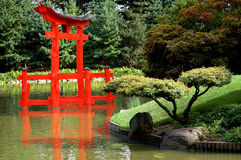 Japanese garden with torii. Reflected in the water Stock Photos