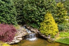 Japanese Garden Water Fall Royalty Free Stock Photos