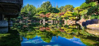Japanese garden water reflection and blue sky. Green plants and clear water Royalty Free Stock Image