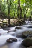 Japanese garden waterfall Royalty Free Stock Photos