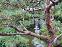 Japanese Garden Waterfall Royalty Free Stock Image