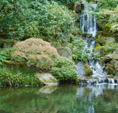 Japanese garden waterfall sqr rt Royalty Free Stock Photo