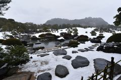 Japanese garden with white snow royalty free stock photography