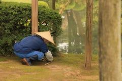 Japanese Gardener. Working Kenrokuen Gardens Japan Stock Photography