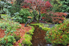 Japanese gardens Stock Photos