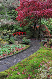 Japanese gardens royalty free stock image