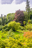 Japanese Gardens in Kildare. Lush and colorful Japanese Gardens in Kildare, Ireland royalty free stock photo
