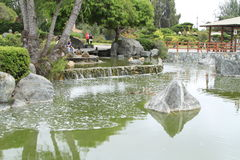 Japanese gardens in La Serena Chile Royalty Free Stock Photography