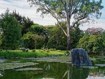 Japanese Gardens Royalty Free Stock Image