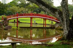 Japanese Gardens red bridge and reflection in pond with tree Stock Images
