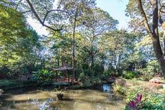Japanese gardens at Ribeirão Preto city zoo Fabio Barreto. Sao Stock Photos