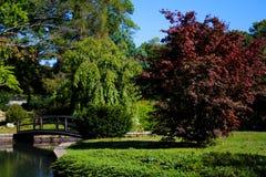 Japanese Gardens, Roger Williams Park Royalty Free Stock Photo