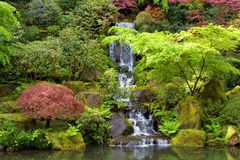 Japanese Gardens Waterfall Landscape. Portrait view of a waterfall in a Japanese style Garden Stock Photography