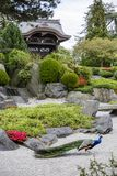 Japanese Gateway Kew Gardens Royalty Free Stock Photography
