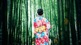 Japanese Geisha Between Bamboo Trees Royalty Free Stock Photo