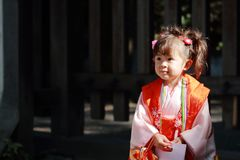 Japanese girl on Seven-Five-Three festival Royalty Free Stock Photo