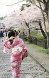 Japanese girl in traditional dress called Kimono. With Sakura blossom stock image