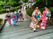 Japanese girls in Kimono. Seven young Japanese girls wearing traditional colored kimonos, walking in a park in Kyoto, Japan Stock Photography